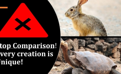 Every creation is Unique, Stop Comparison- Understanding from the Misleading Story of Tortoise and Hare